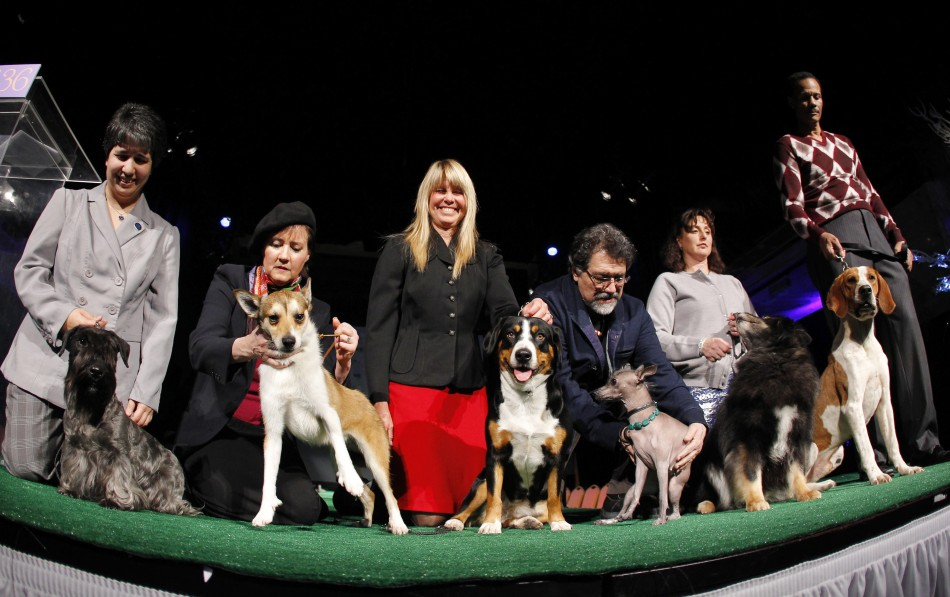 Six New Breeds National Dog Show