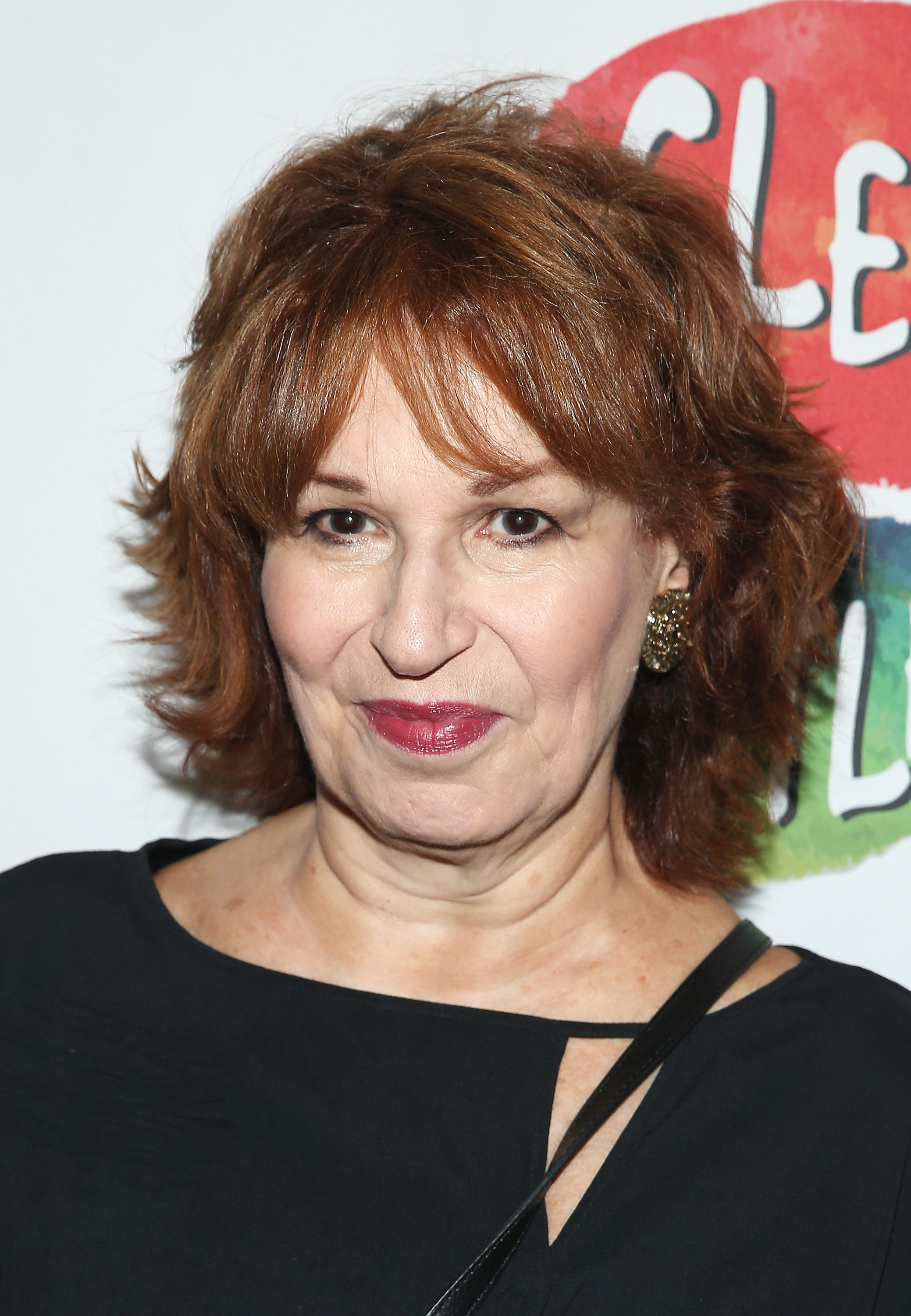 'The View' Slammed By Viewers After Joy Behar And Co-Hosts ...