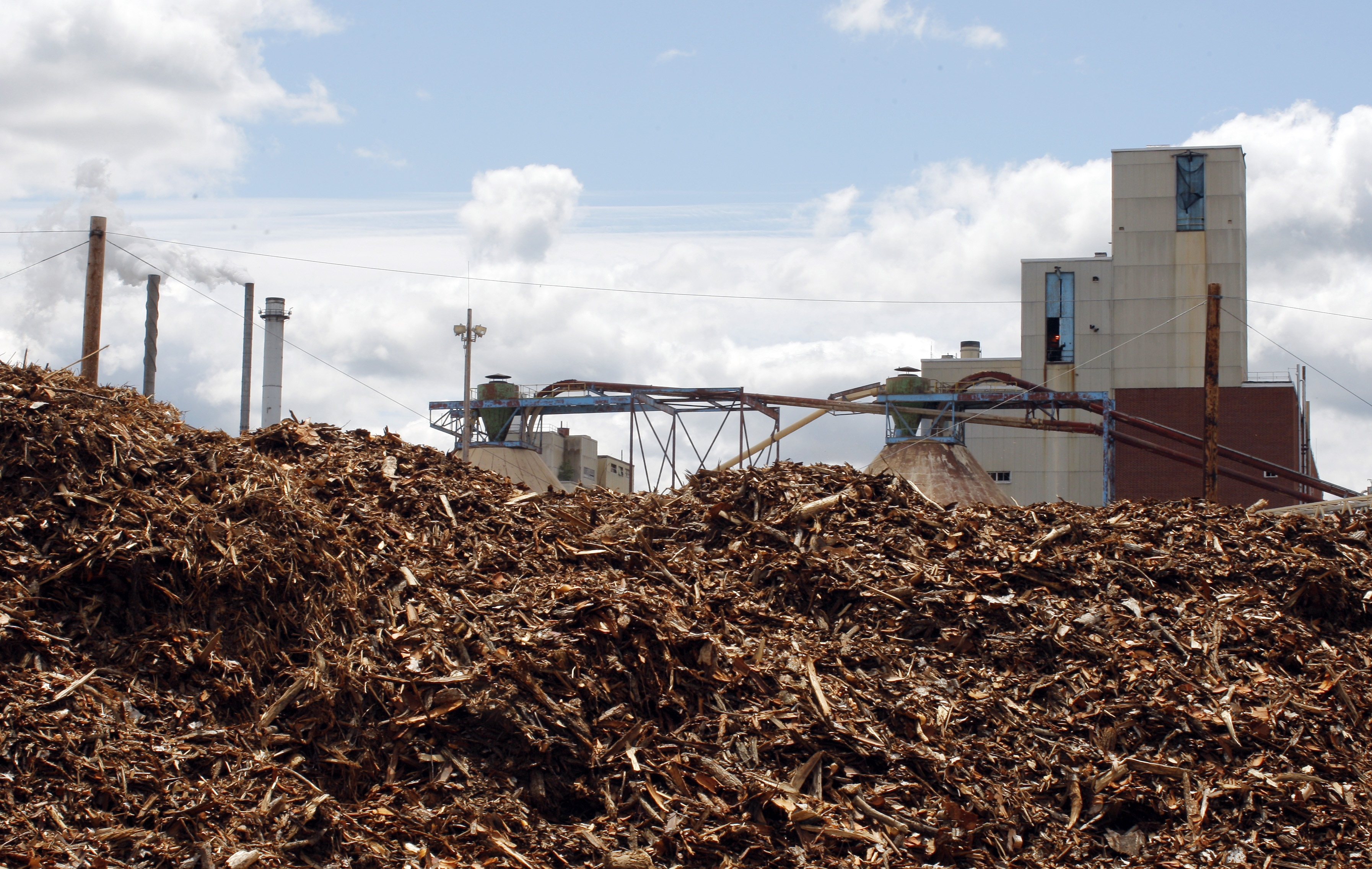 Burning Wood Biomass ~ Biomass energy plants losing in competition with solar as
