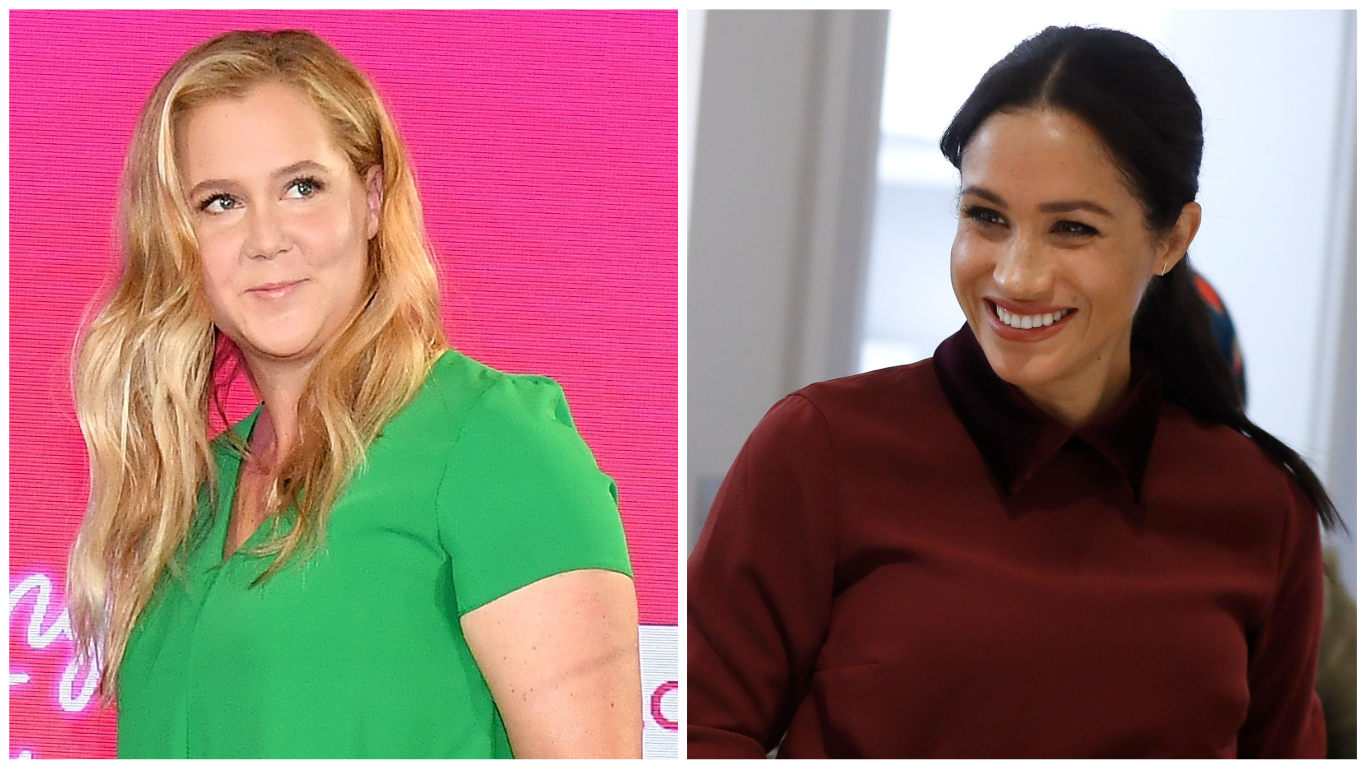photo Amy Schumer Claps Back at Perez Hilton Saying Her Career Is Stalled' Because She'sPregnant