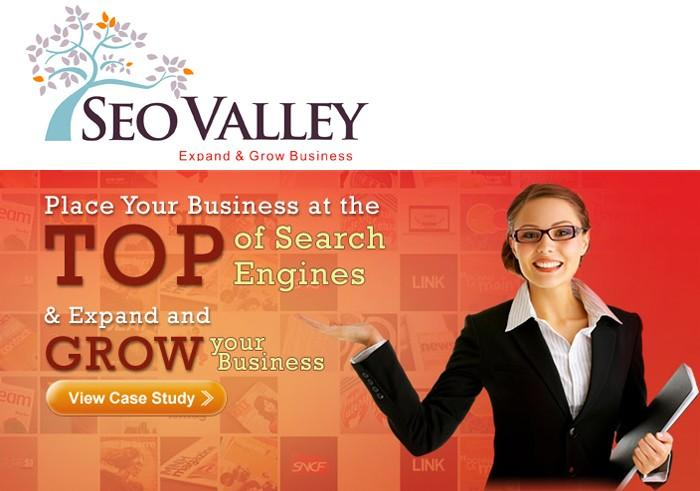 3. SEOValley - Top SEO Firms 2012
