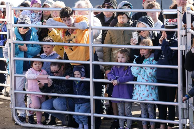 Children and parents catch a glimpse of Toa in Plimmerton Photo: AFP / Marty MELVILLE