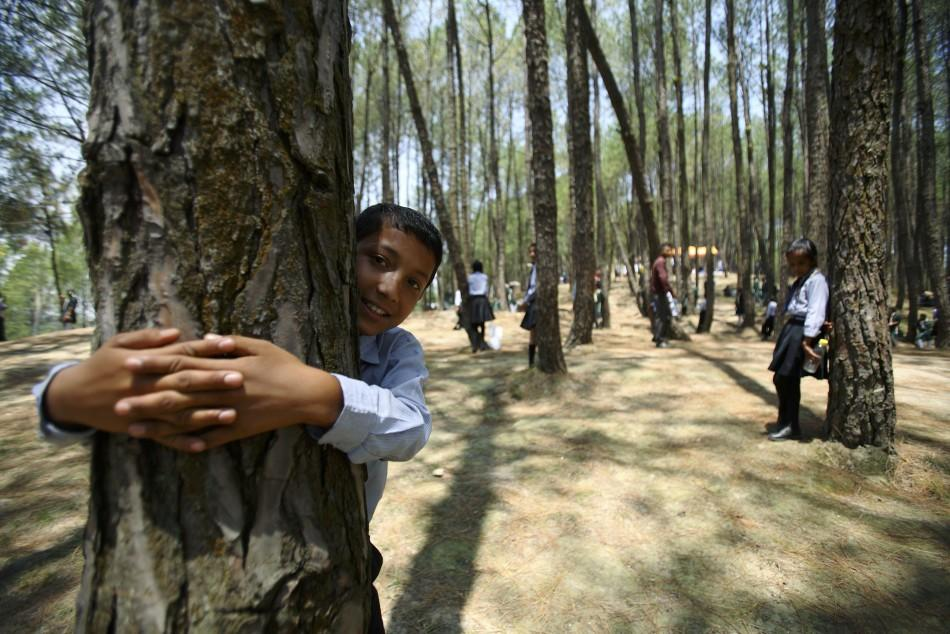 WED: Nepal Tree Huggers (3 of 5)