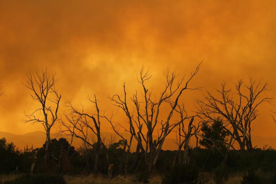 Smoke from the Wallow Wildfire surround trees in Eagar, Arizona