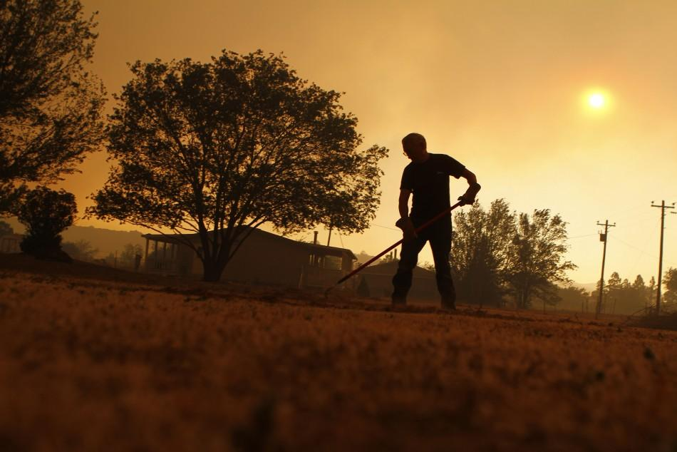 Wayne Lutz rakes dead grass as he tries to protect his house from the Wallow Wildfire in Eagar, Arizona