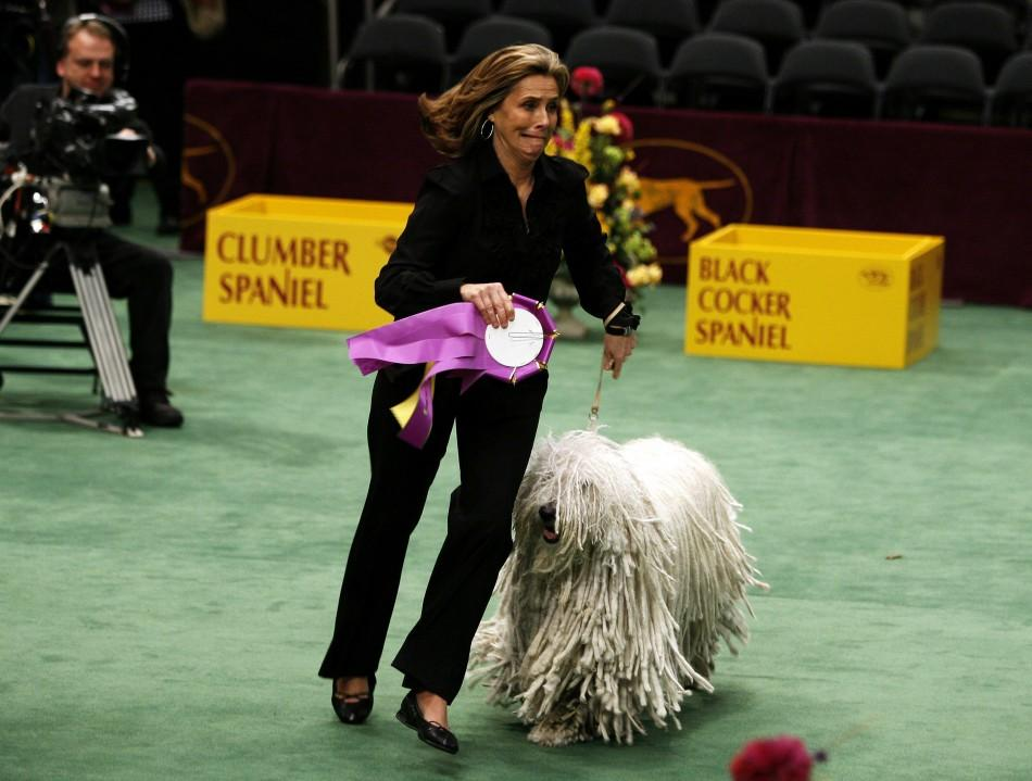 Meredith Vieira runs around the ring while showing a Komondor during a Today Show event on the second day of the 2009 Westminster Dog Show in New York February 10, 2009.