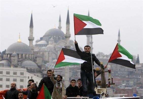 Pro-Palestinian activists wave Palestinian flags during the welcoming ceremony for cruise liner Mavi Marmara at the Sarayburnu port of Istanbul December 26, 2010. Nine Turkish activists died in May when Israeli commandos raided the boat, which was part of