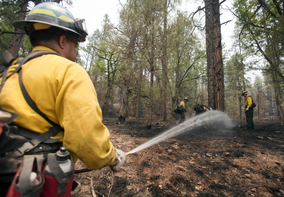 Wildland firefighters work at a hot spot on the eastern edge of the Wallow Wildfire outside Alpine