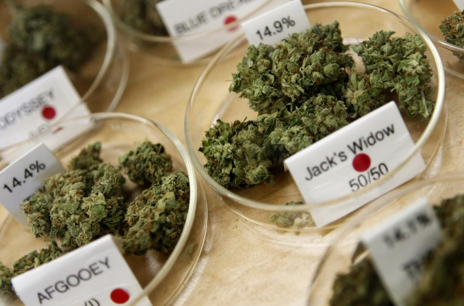 US marijuana shops struggling for bank services