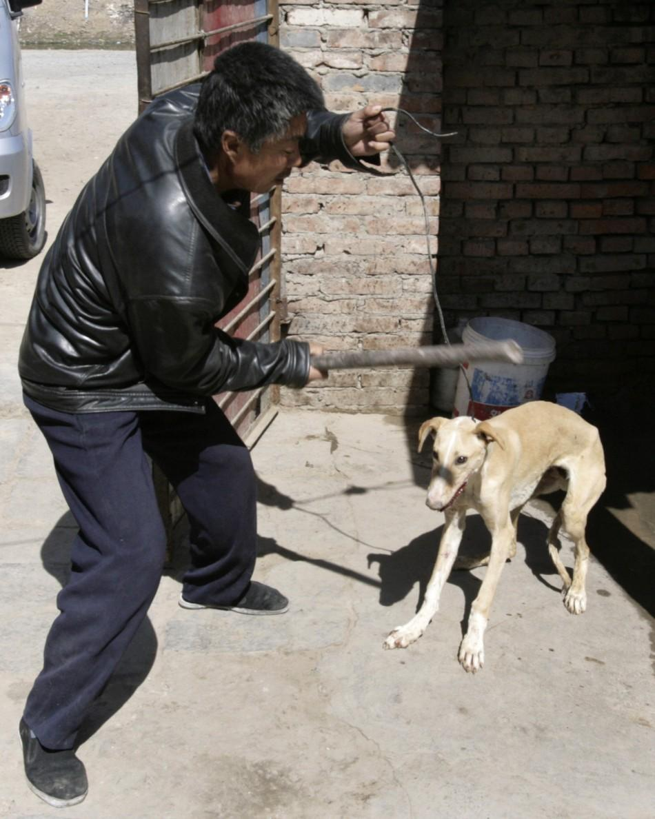 A man hits a dog that is about to be slaughtered in the backyard of his home in Beijing