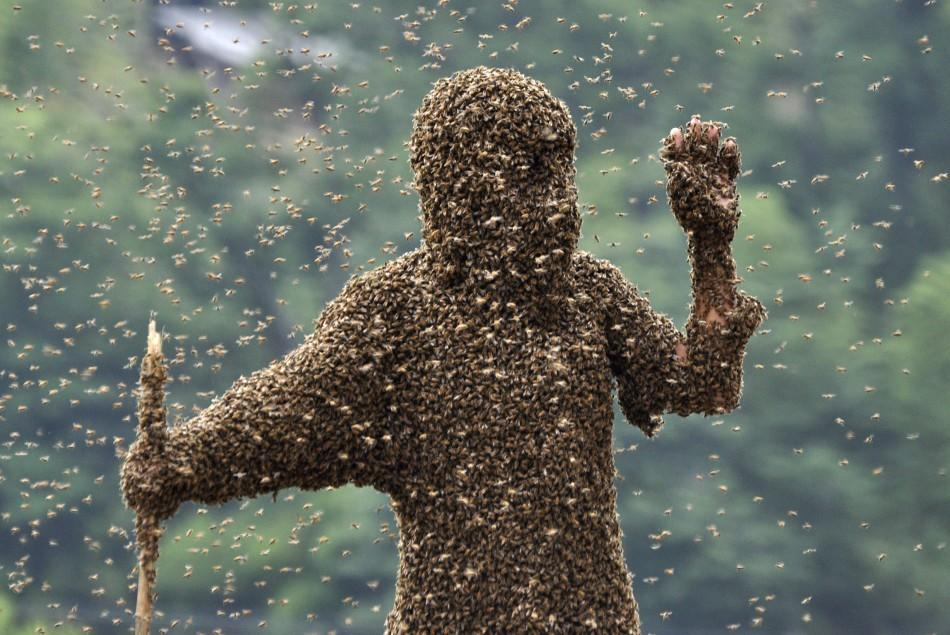 Bizarre Images of Chinese Farmers Covered With Thousands of Killer Bees.