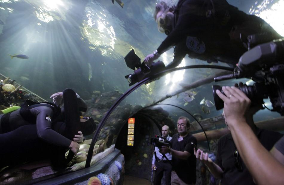 Free divers Maric and Bonin kiss to set the new world record for an underwater kiss, in an oceanic tank at the Gardaland Sea Life Aquarium in Castelnuovo del Garda