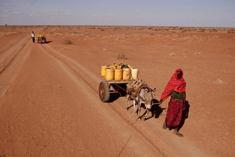 A man leads a donkey transporting water containers in Barmil