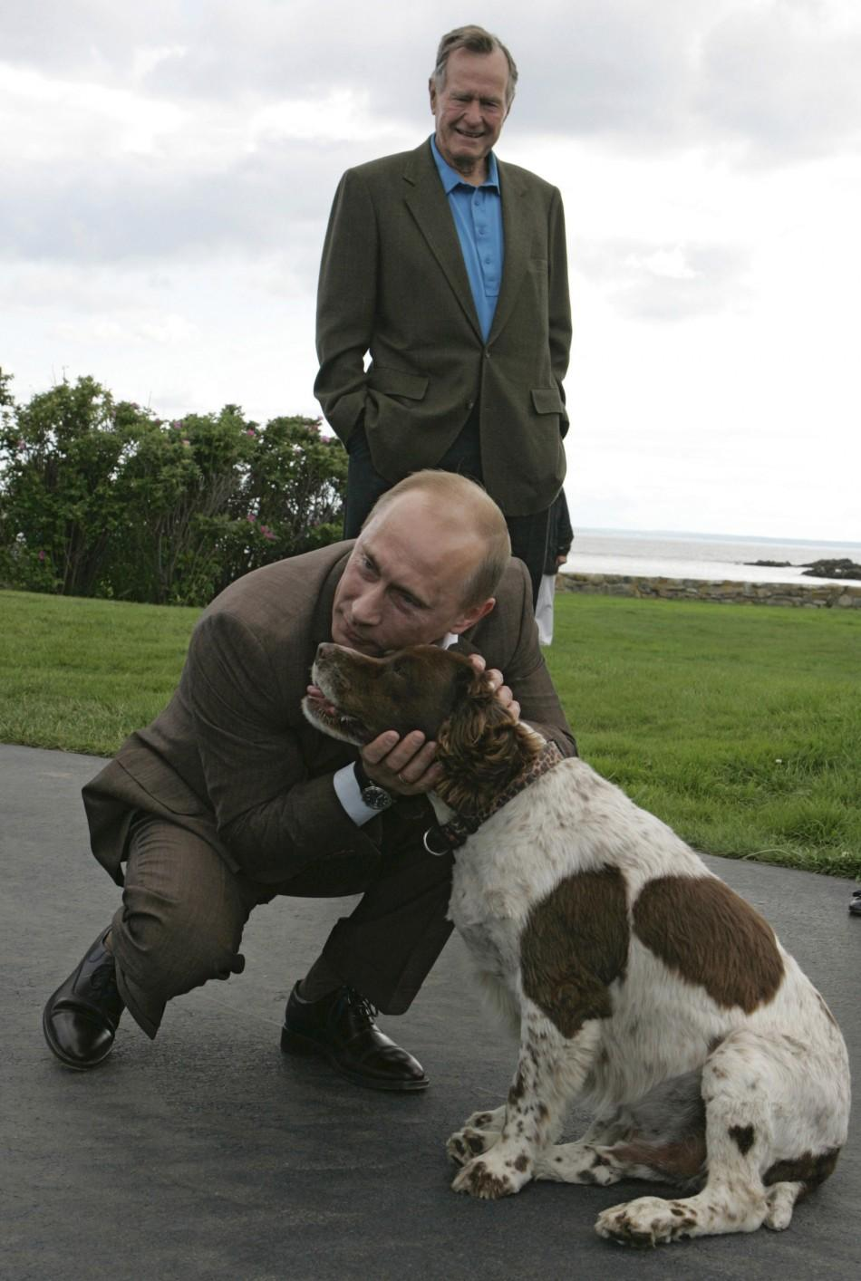 Russia's President Vladimir Putin strokes a dog on his arrival to the family home of former U.S. President George H. W. Bush in Kennebunkport