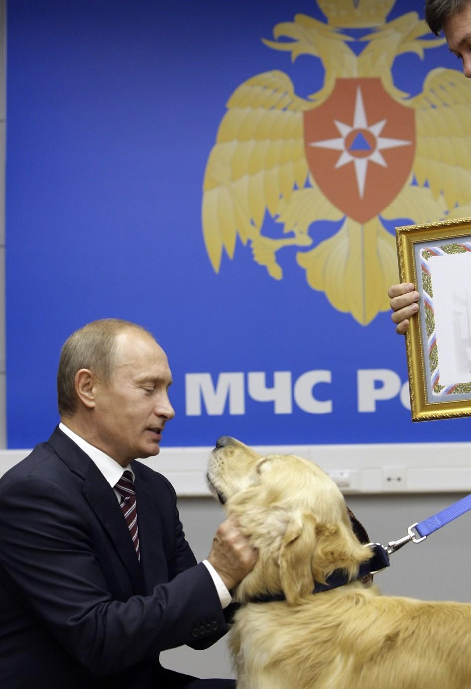 Russia's Prime Minister Vladimir Putin strokes a rescue dog as he visits Emergency Situation Ministry in Moscow