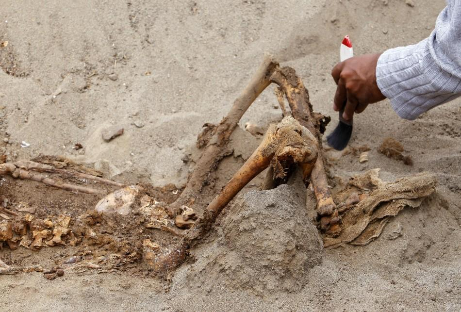An archaeological student cleans one of the unearthed remains of 42 children and 74 camelids, sacrificed approximately 800 years ago and found in the fishing town of Huanchaquito