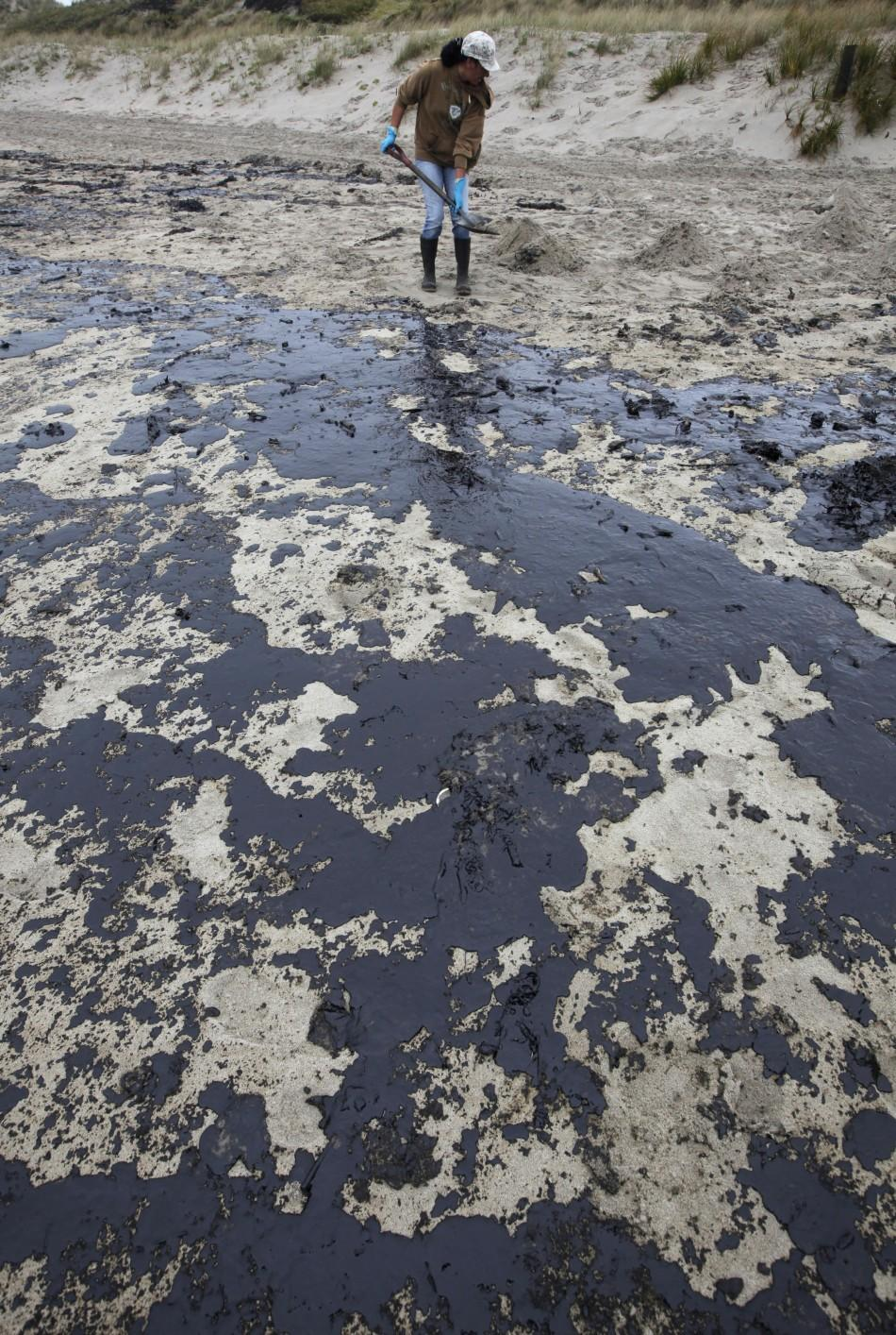 NZ Oil Spill 3