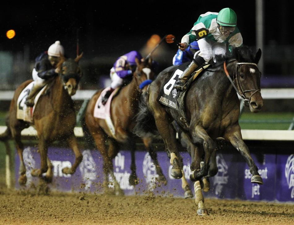 Jockey Jose Lezcano aboard Royal Delta races to first place in the Ladies Classic during the 2011 Breeders' Cup World Championship horse races at Churchill Downs in Louisville, Kentucky