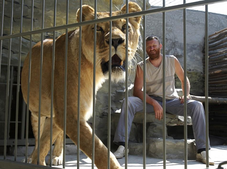 Zoo owner and artist Aleksandr Pylyshenko sits inside a cage with female African lion Katya, at a private zoo situated in his yard in the city of Vasilyevka, southeastern Ukraine August 3, 2011.