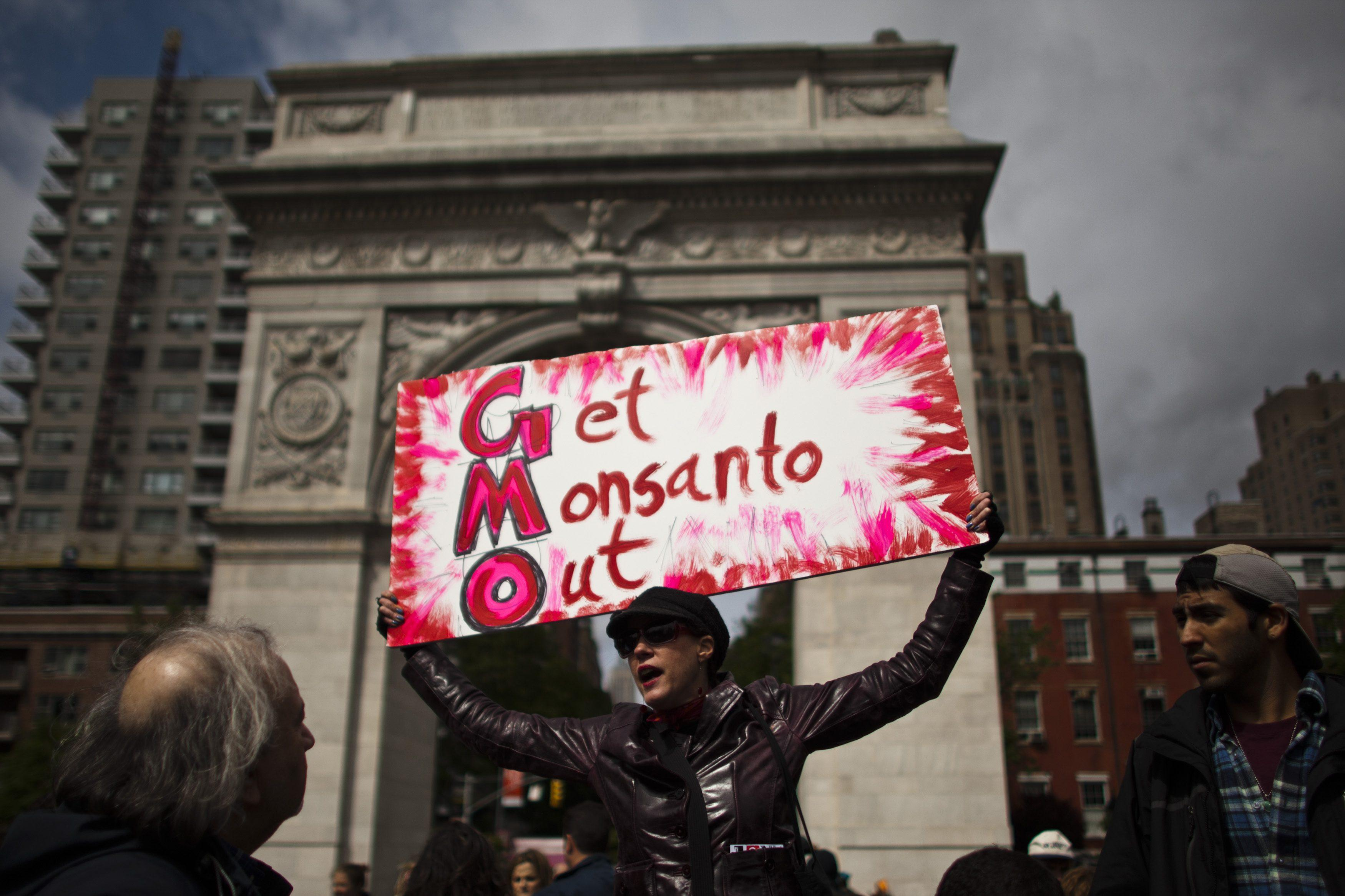 March Against Monsanto-New York-2