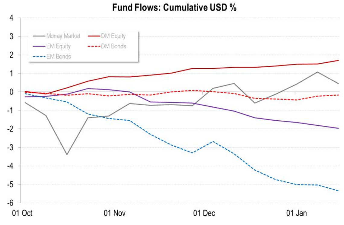 Fund Flows, Cumulative USD %, Citigroup Research Note Jan