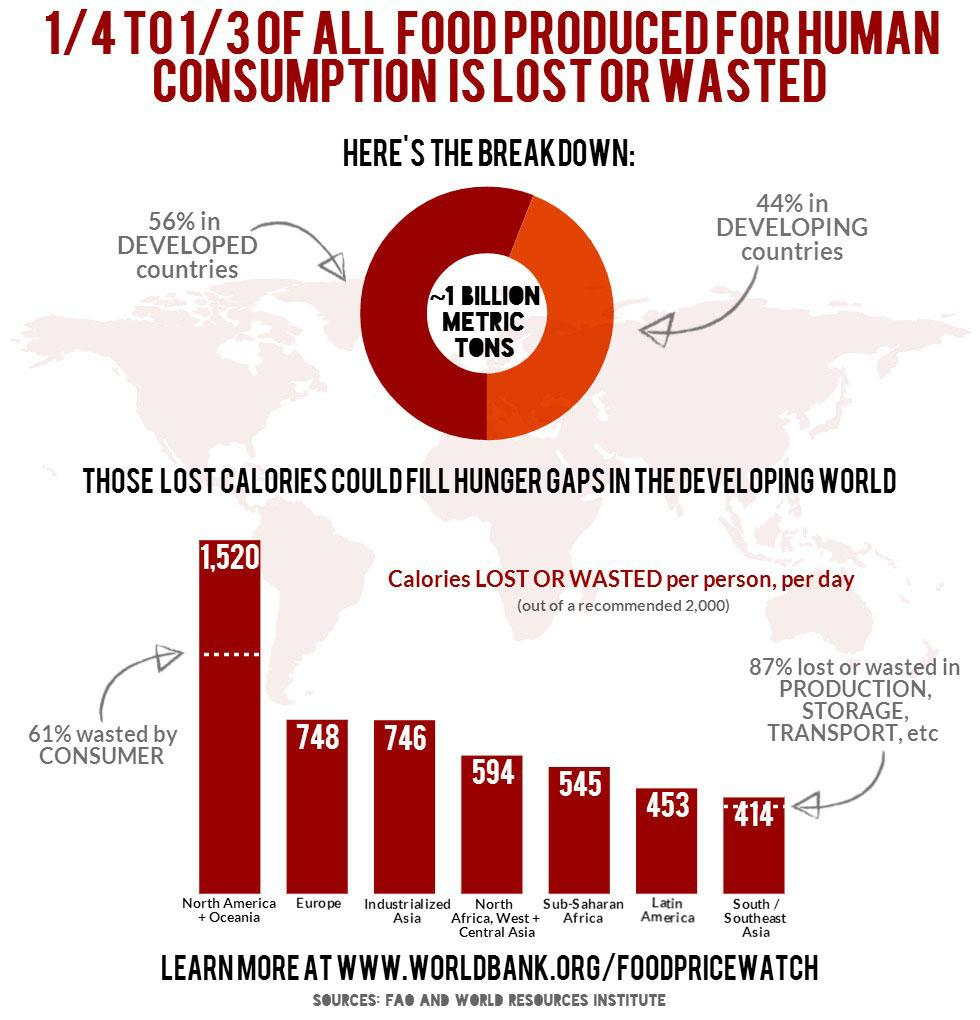 World Bank Food Infographic 2014, Food Waste Statistics