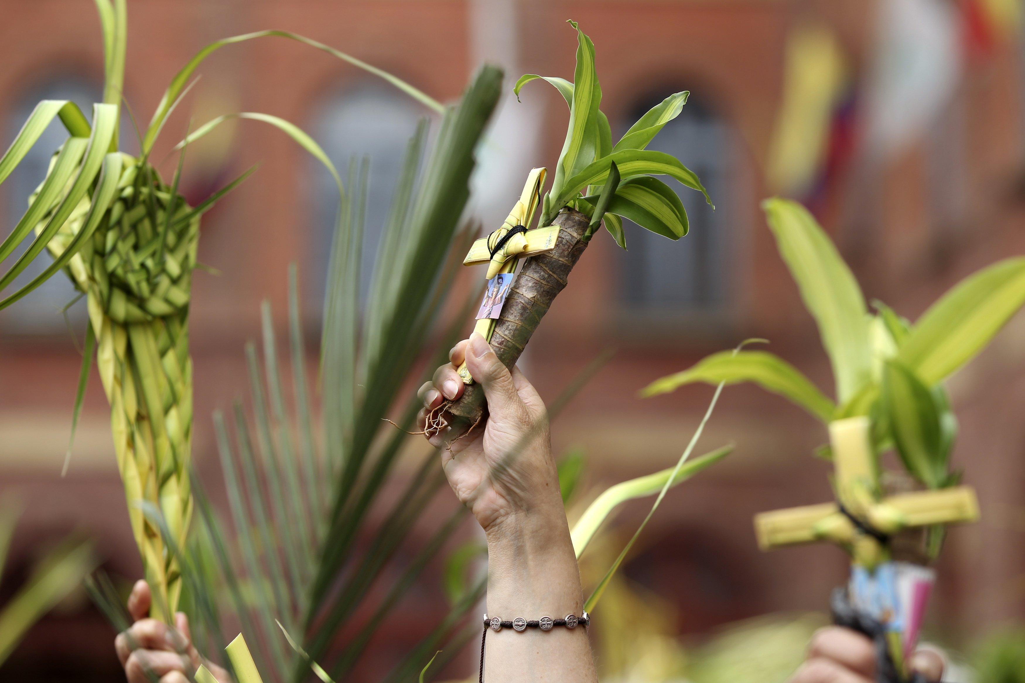 Holy Week - Palm Sunday Colombia 2