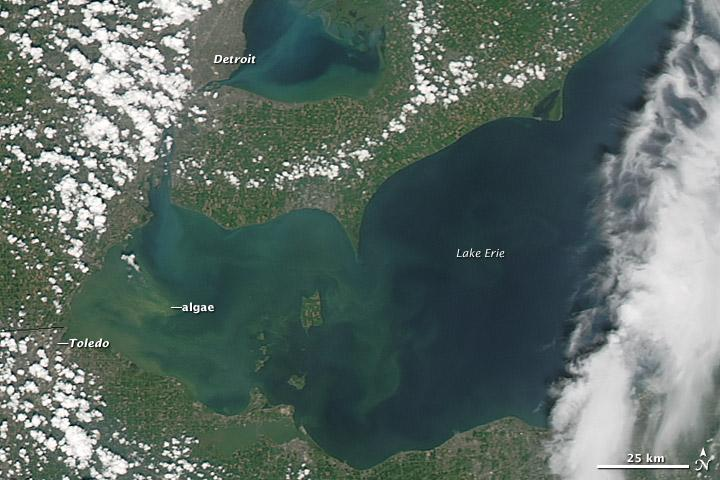Lake Erie Algae Bloom Water Crisis