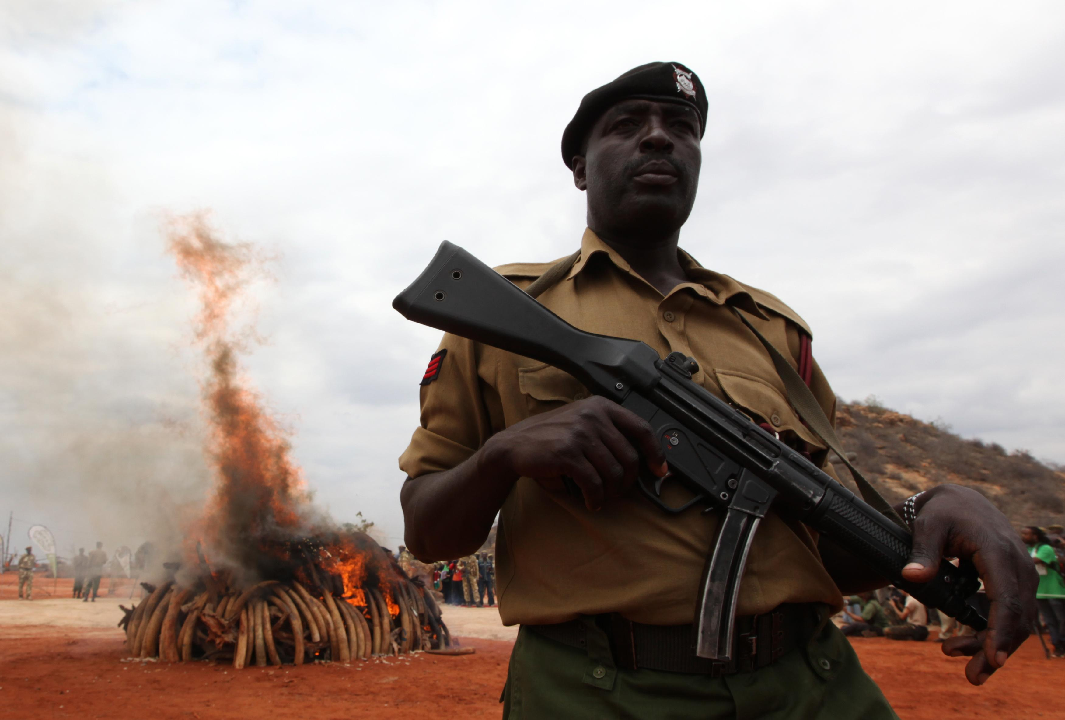 Kenya Illegal Ivory Burn