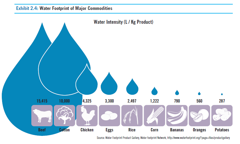 Water Intensive Foods