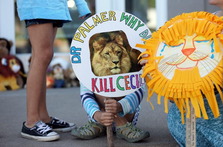 cecil-lion-protest_0