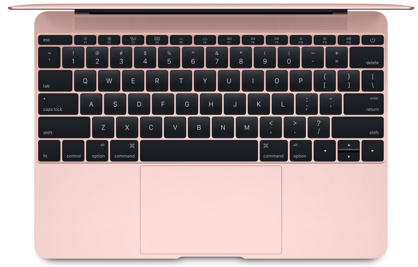 Apple MacBook rose Gold