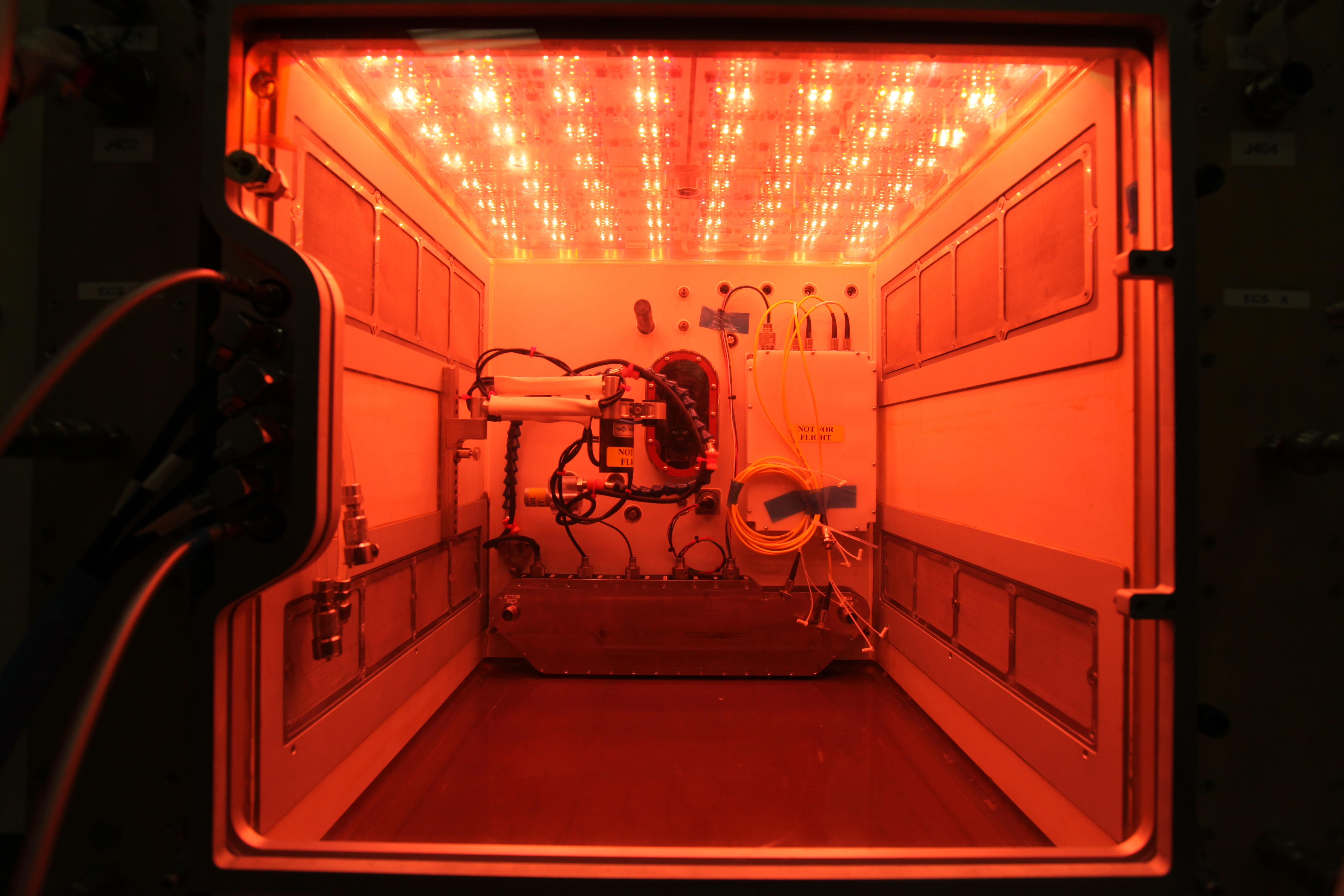 NASA Tests Its Largest Plant Chamber Prototype Ahead Of Space Station Delivery
