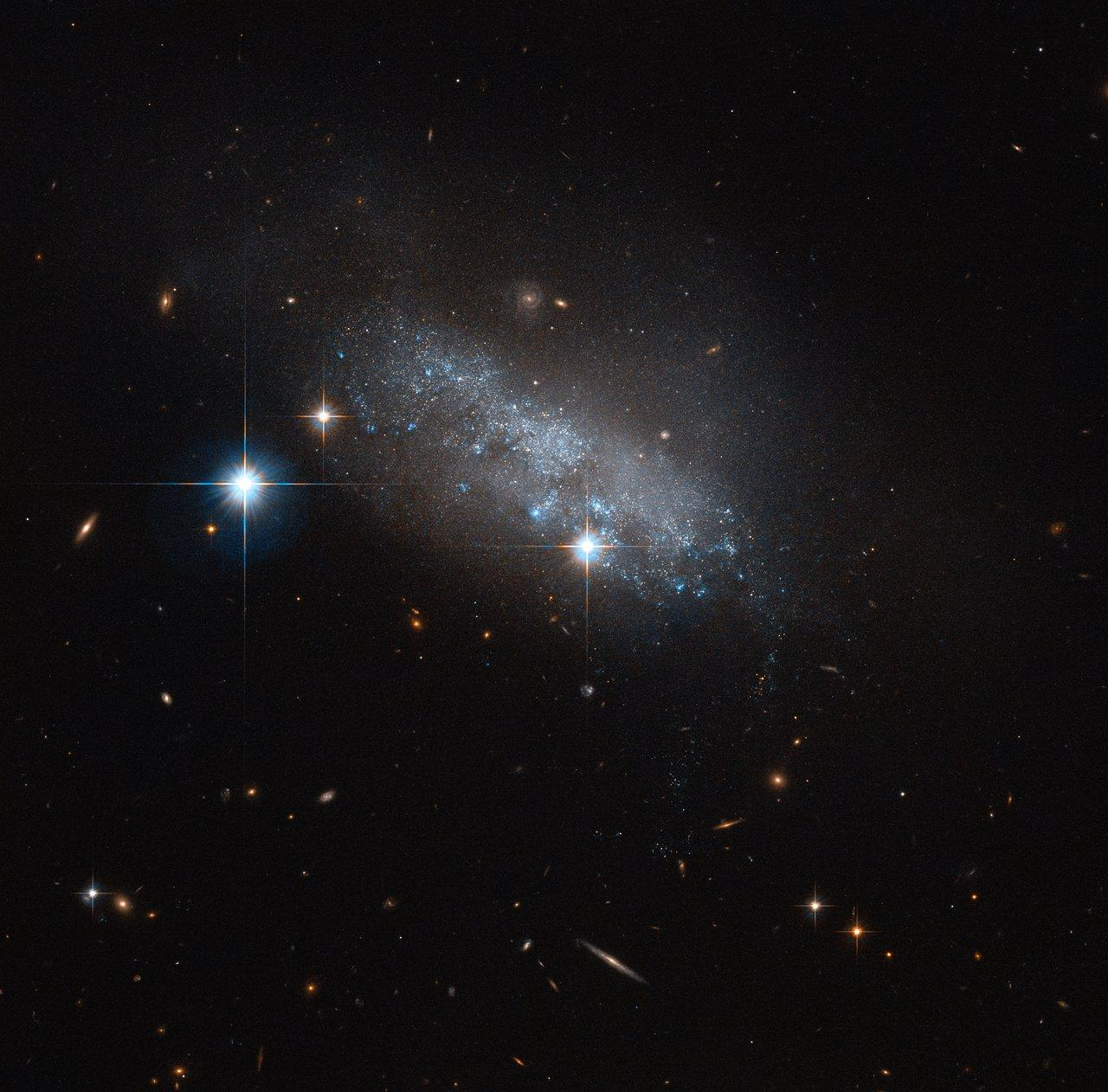 Hubble Photographs NGC 4388 — A Distant Galaxy Feeling The Pull Of Its Neighbors