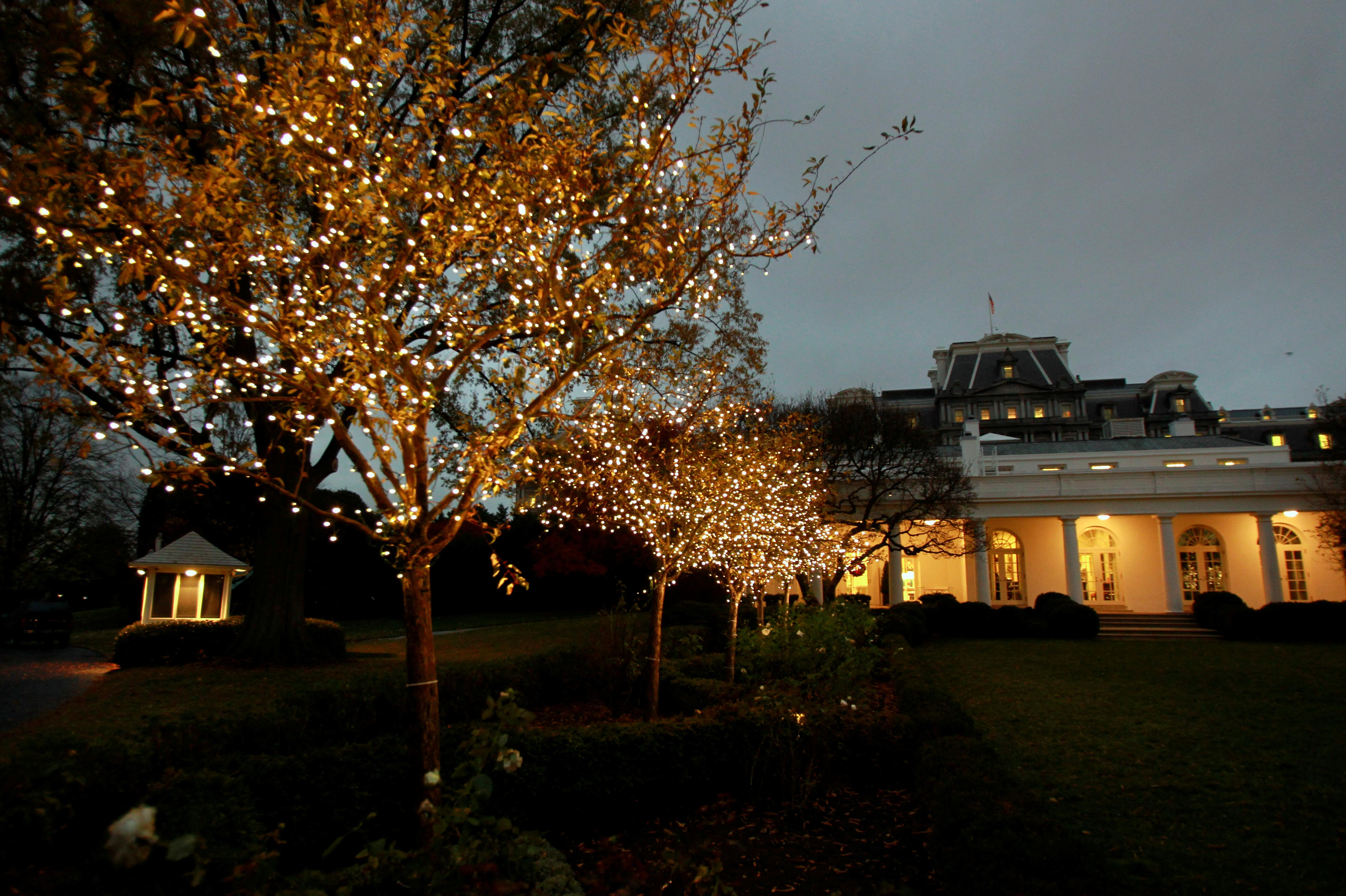 White House Christmas Decorations Photos: DC Set For Holidays As ...