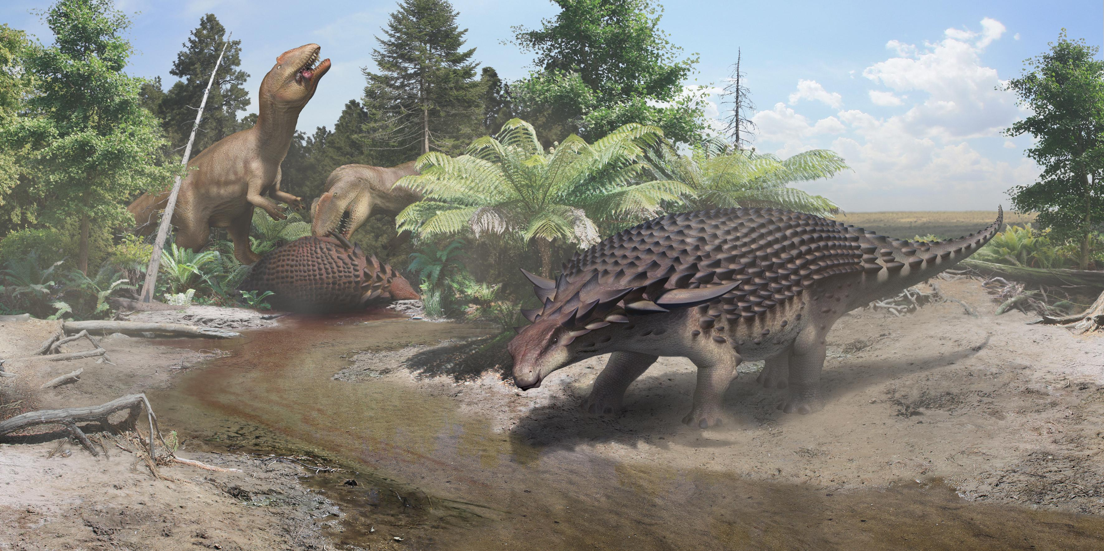 Big, armoured dinosaur might have used camouflage to avoid predators
