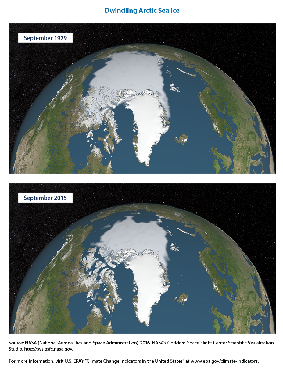 arctic sea ice melt map