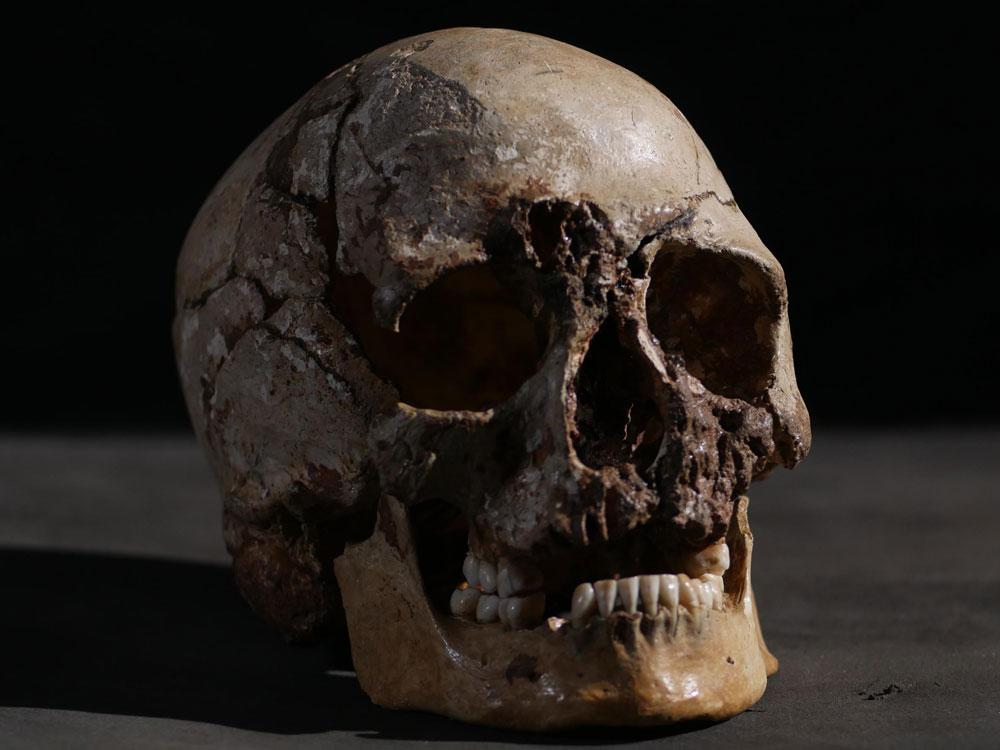 Skull kept on a mantle turns out to be remains from a Tennessee man missing since 2012.