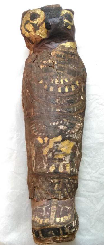 Ancient mummy