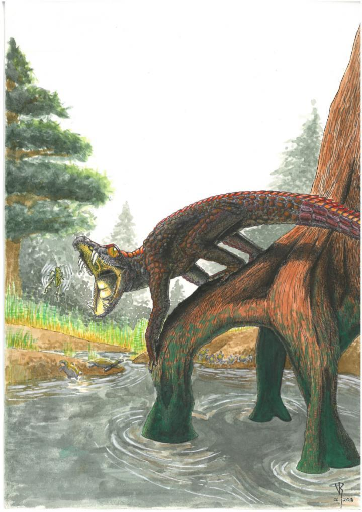 Giant 'Carolina Butcher' crocodile ancestor ruled before ...