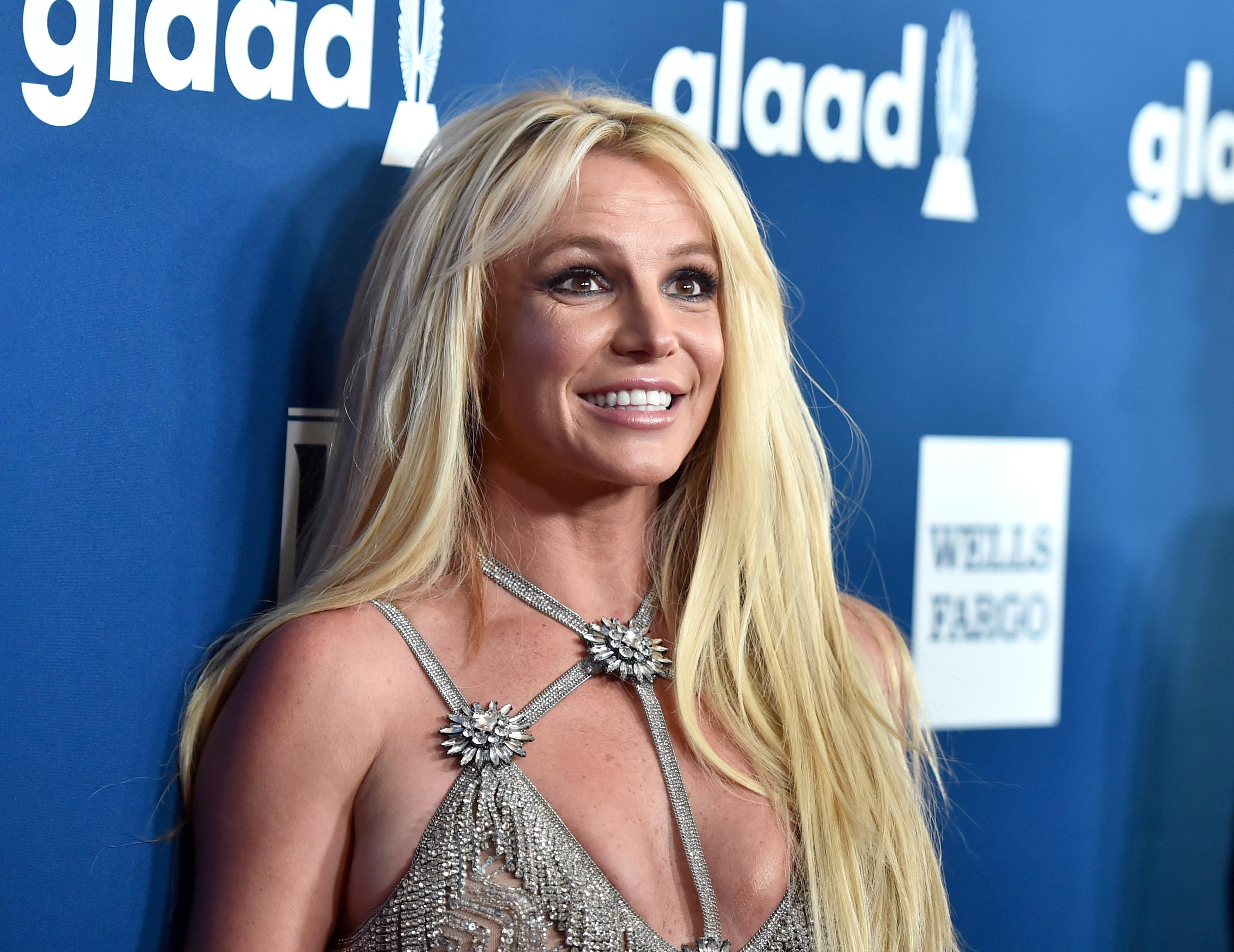 Britney Spears Spent More Than 24K on Dog Care, As One Does pictures