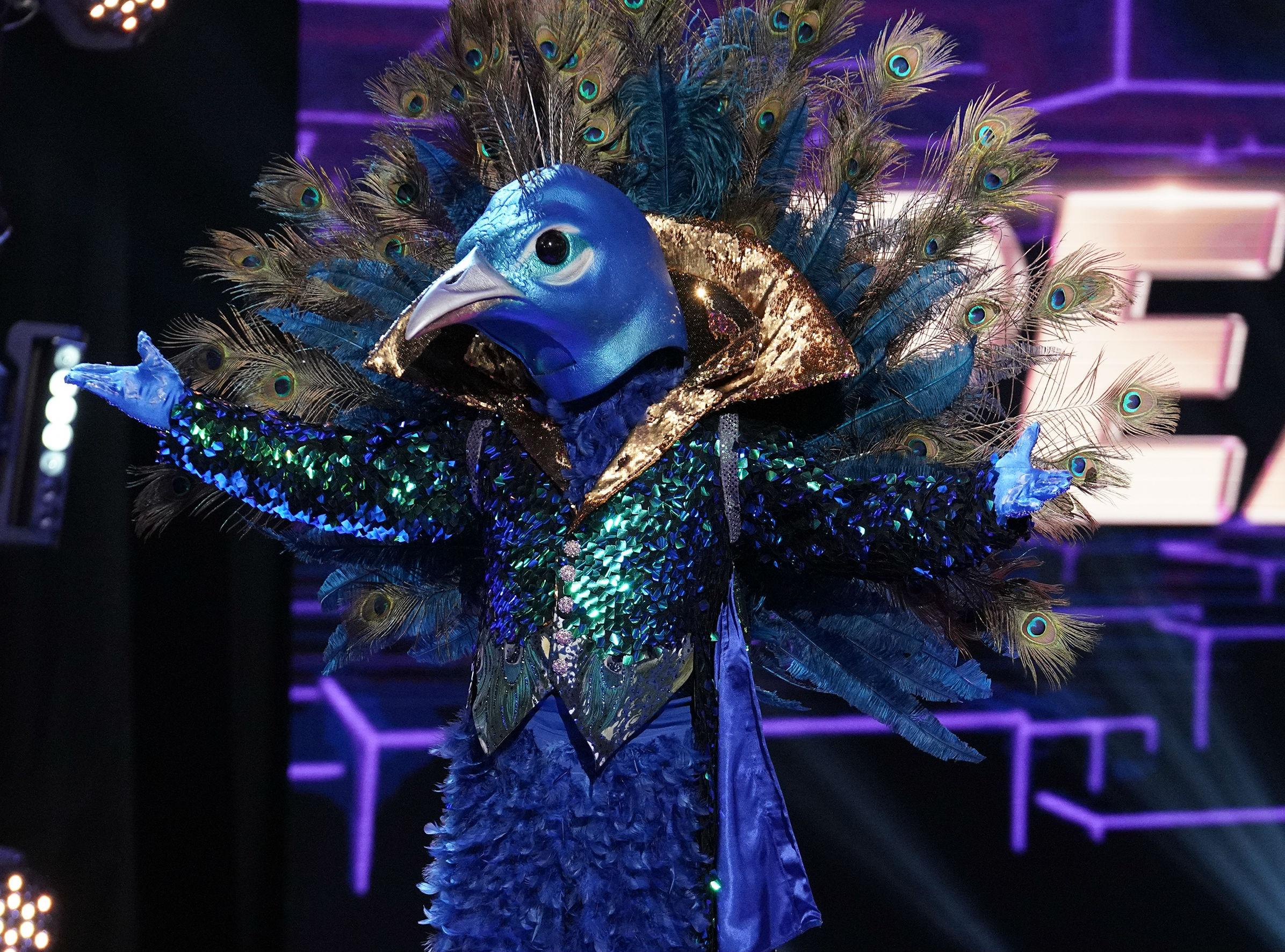 The Masked Singer Spoilers First Celebrity Participant Revealed Contestant Clues Recap