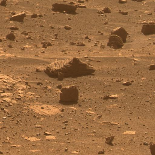 First Image from a Mars Rover