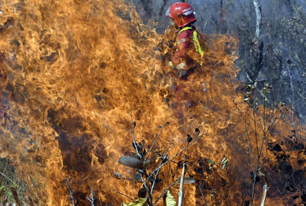 A firefighter tries to control a blaze near Charagua, Bolivia, in August 2019