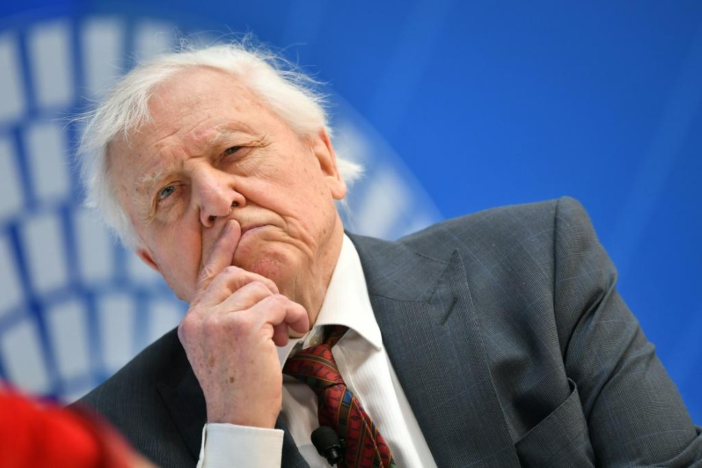David Attenborough has criticised Australia over its coal emissions and for not giving 'a damn what it does to the rest of the world'
