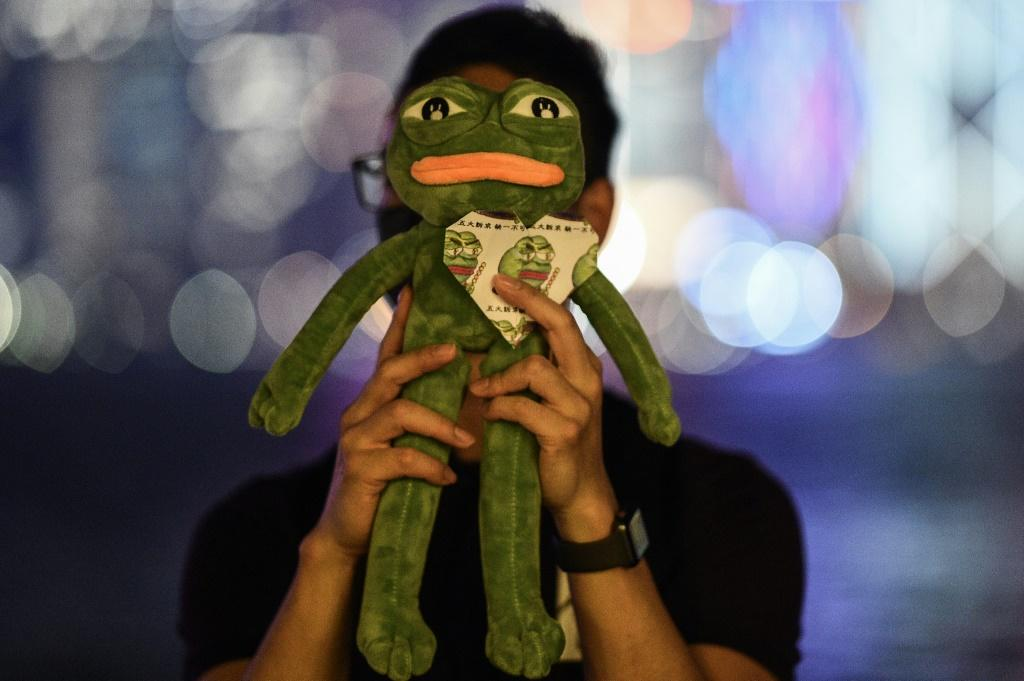 Pepe's creator seems to approve of the frog's new role, writing in an email to a protestor: 'This is great news! Pepe for the People!'