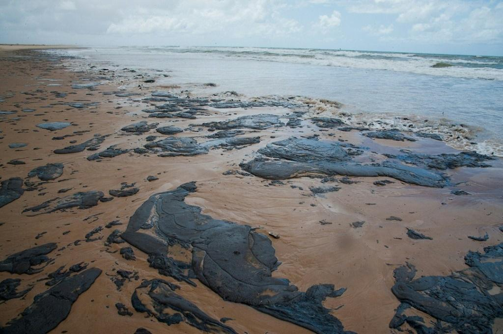"""Tamar, a group dedicated to the protection of sea turtles, said the oil spills staining Brazilian beaches was """"the worst environmental tragedy"""" it has encountered since its formation in 1980"""