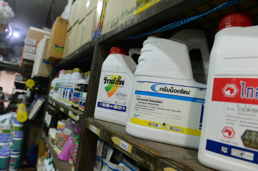 Containers of pesticide and weed killer containing paraquat and glyphosate on sale at a gardening shop in Bangkok
