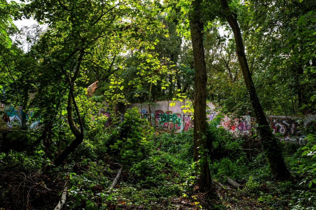 Graffiti-covered sections of the wall are today part of a leafy green belt popular with joggers and cyclists