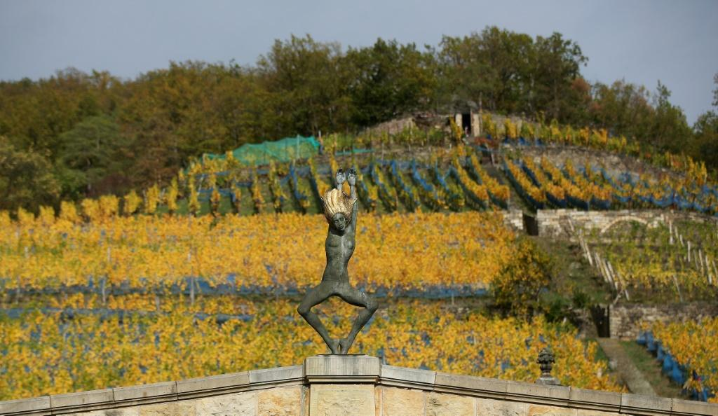 Sculptures by Zimmerlin's wife Malgorzata Chodakowska bring in more income than his vineyard, he says